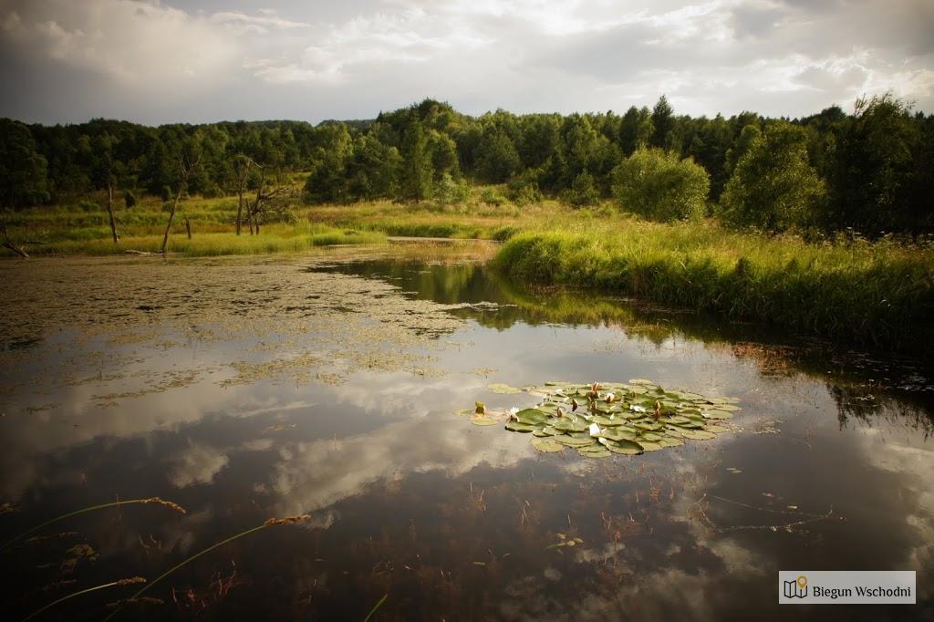 Jasiel - tereny po dawnej wsi