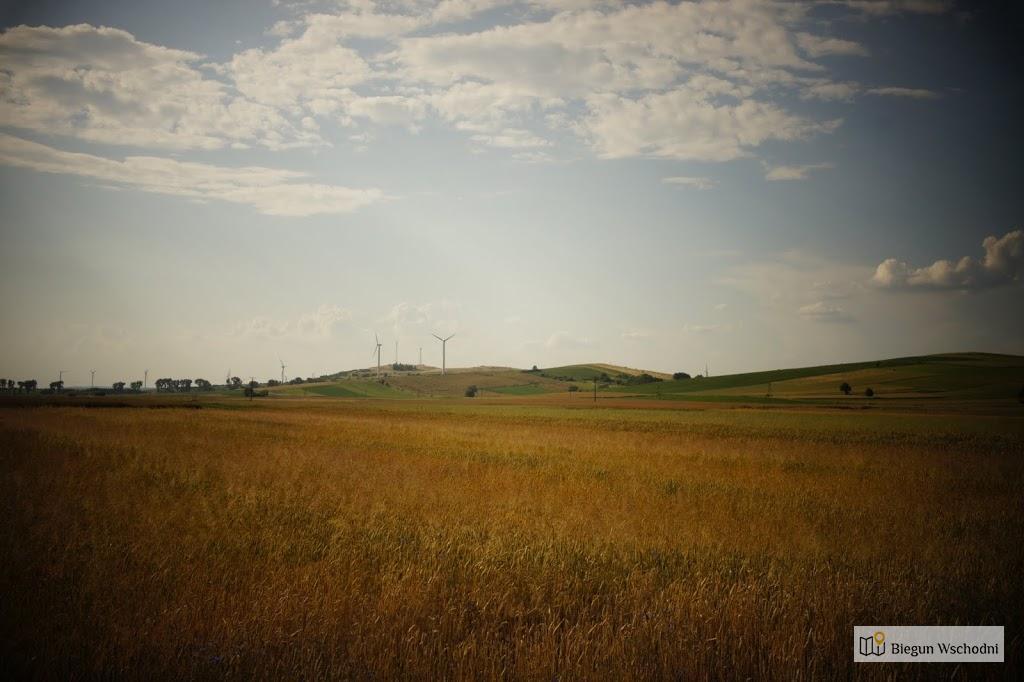 Krajobraz w pobliżu Rymanowa