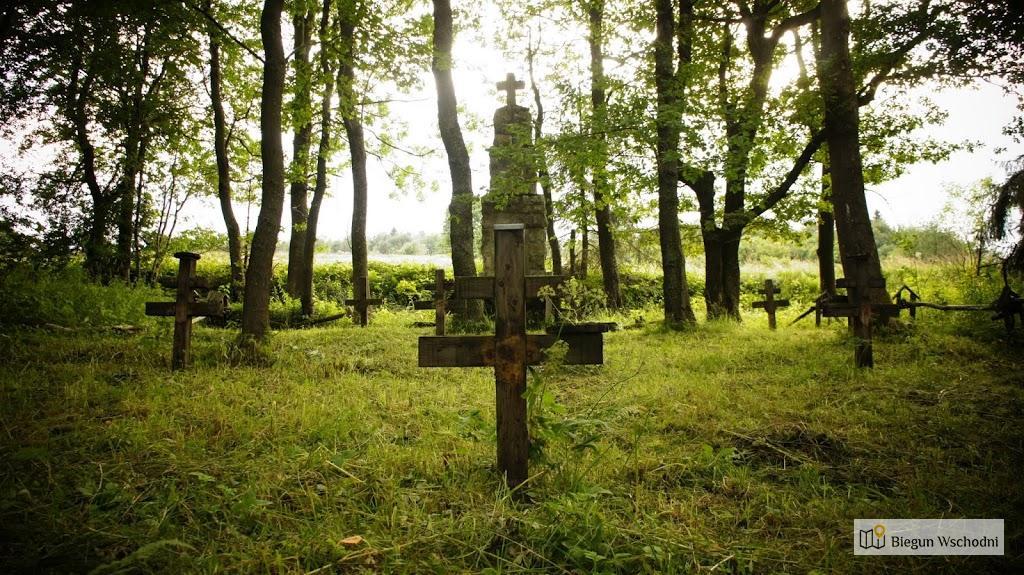 Cmentarz wojenny nr 43 w Radocynie