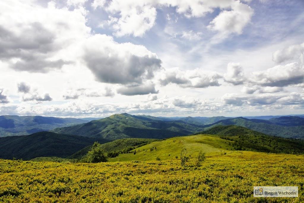 Bukowe Berdo - krótki i piękny szlak w Bieszczadach, pomysł na weekend