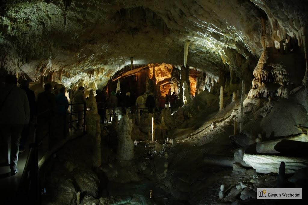 Jaskinia Postojna, Słowenia, urlop na Bałkanach