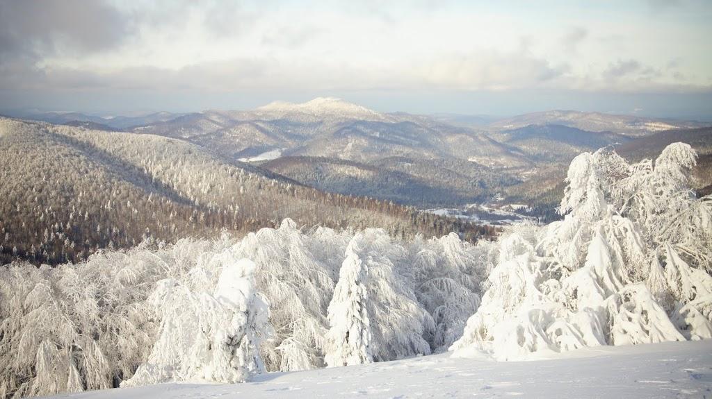 Zimowy widok z Jasła, Bieszczady zimą