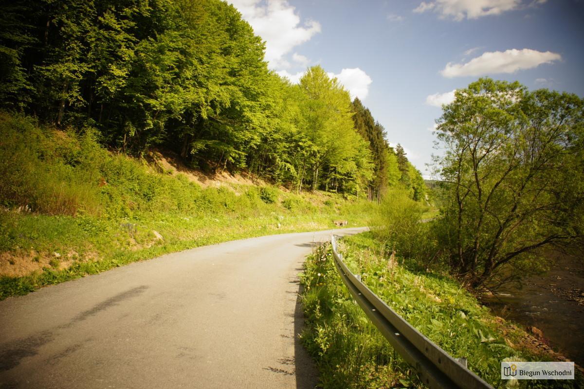 Rowerem po Bieszczadach - Duszatyn