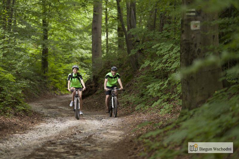Green Velo - szlak przez las