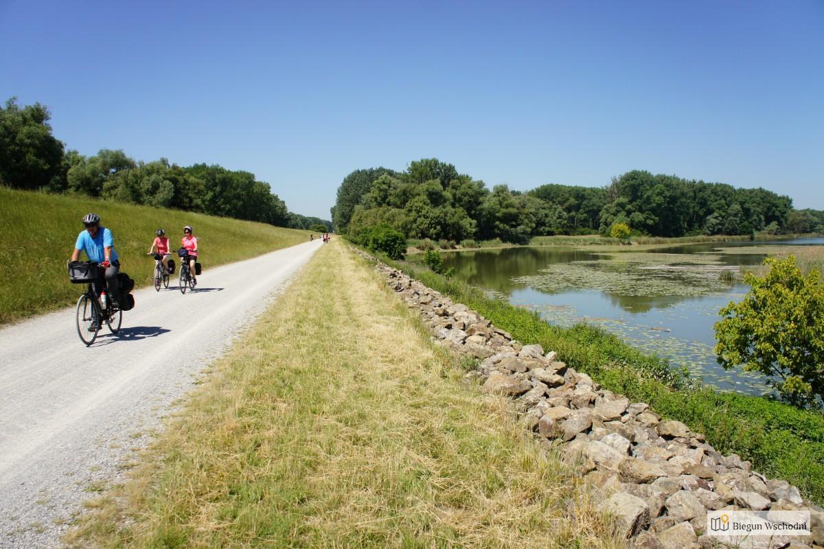 Jaki Rower Trekkingowy Wybrać? Na Co Zwracać Uwagę