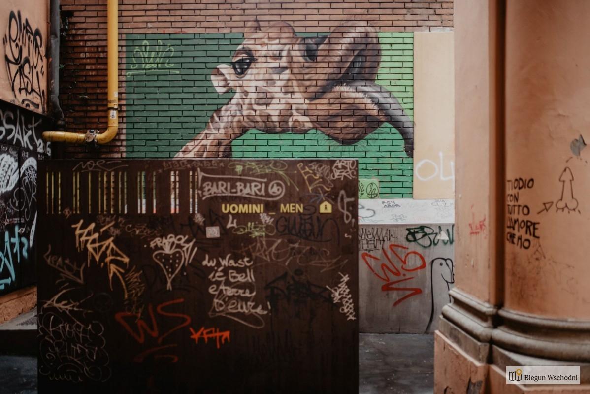 Street art w Bolonii. Co zobaczyć w Bolonii, atrakcje turystyczne